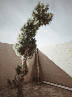 Francesco_Zanet_Marocco_Sahara 0010